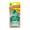 Deodorante Auto Arbre Magique Mela Verde
